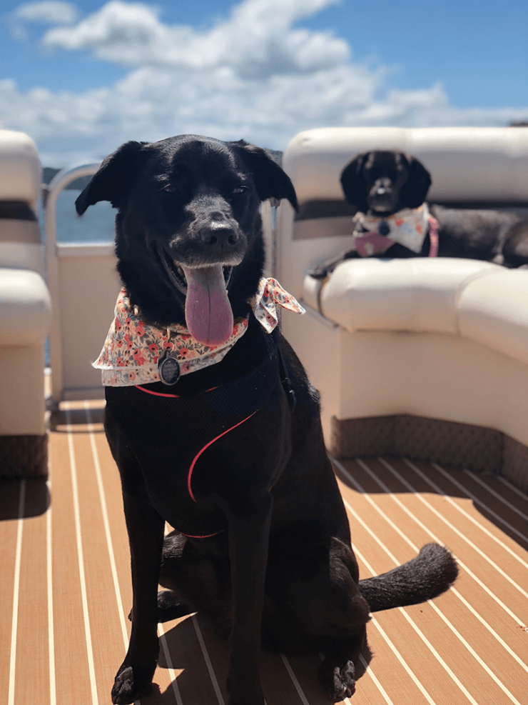 lake-lure-boat-2-isabella-and-penelope.png