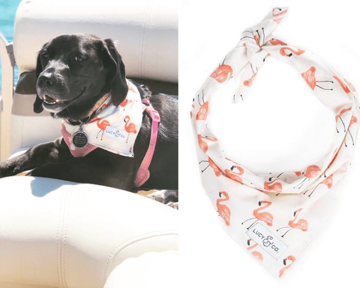 lucy-and-co-flamingo-bandana-isabella-and-penelope.png